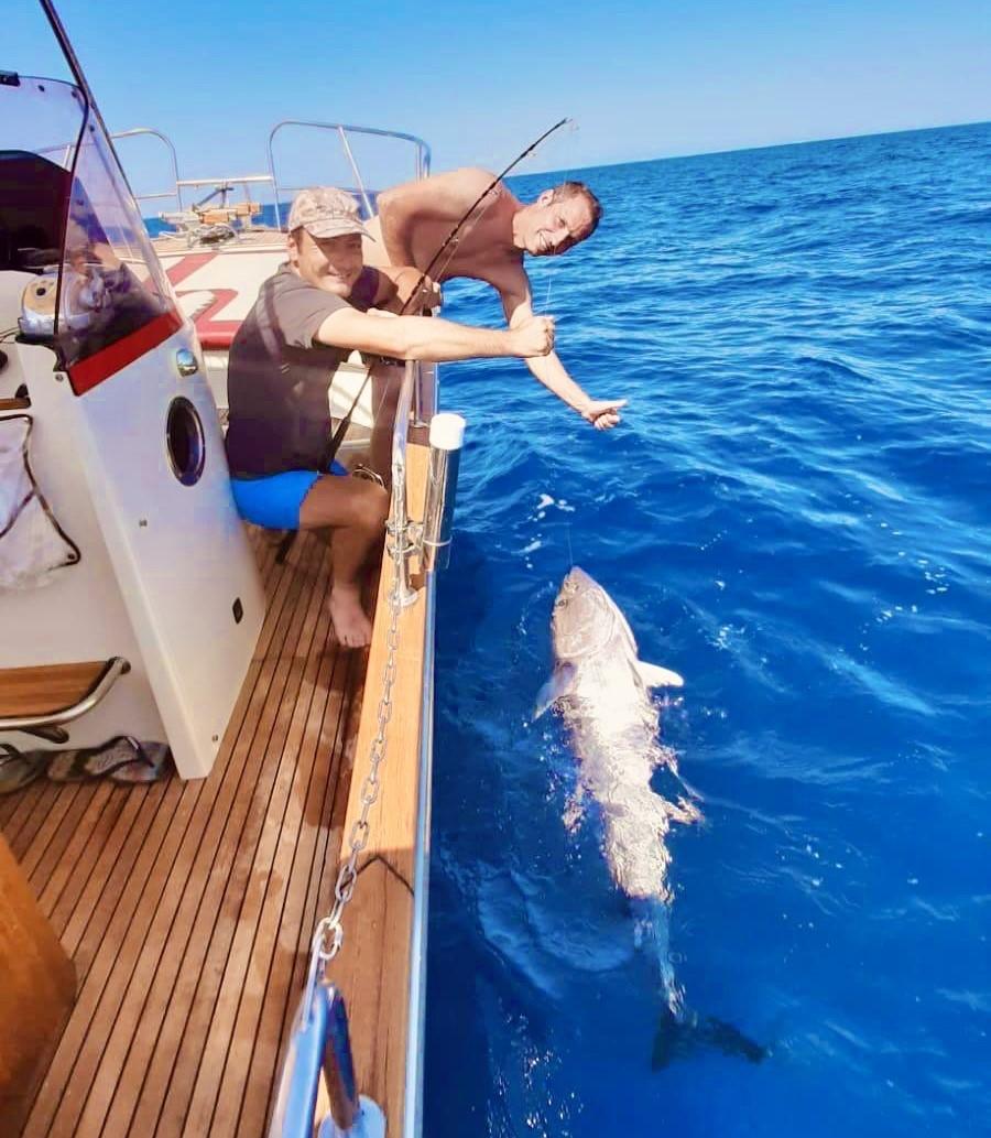 pêche au thon